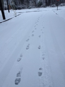 snowprints