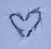 snowylove